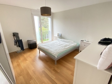 Nachmieter/-in für helle & komfortable 3.5 Wohnung gesucht