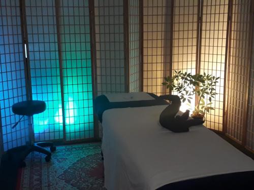 Neu in Bern: Entspannende Massage am Helvetiaplatz