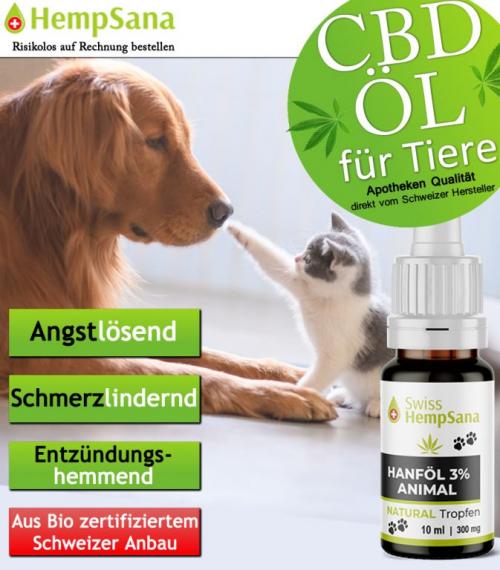 CBD Öl - Gesundheit für Tiere
